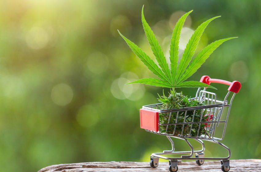 O mercado de cannabis nos EUA em meio a Pandemia de coronavírus