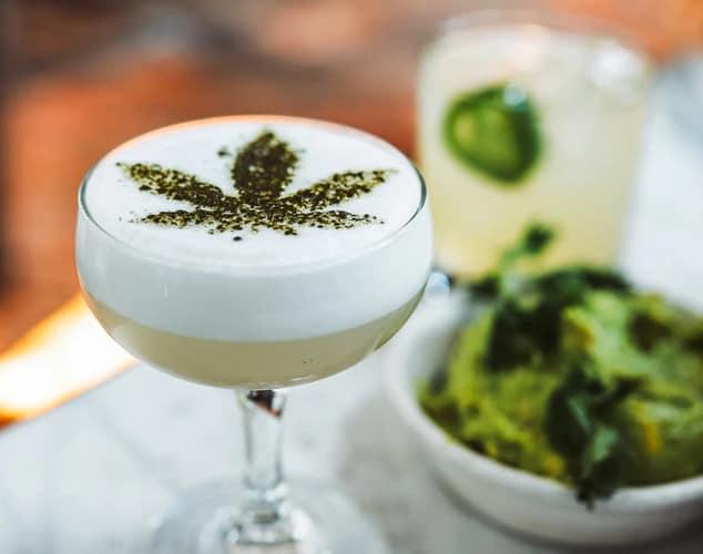 Bebidas a base de cannabis: o que são e quais os efeitos