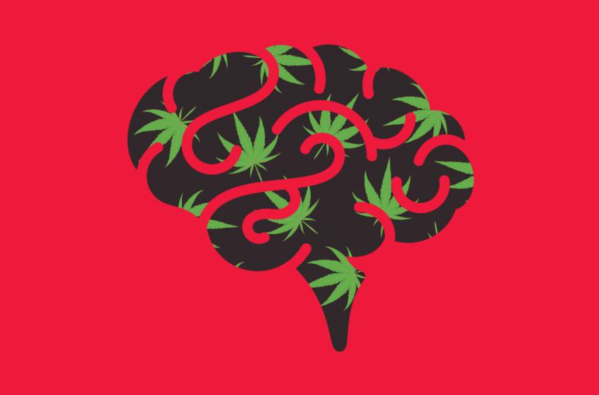 A ação da maconha no cérebro