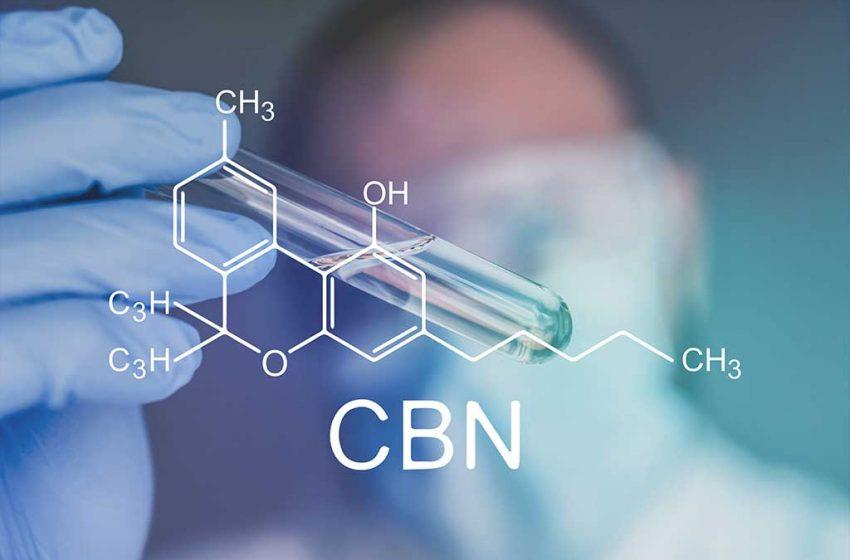 CBN: O que é, Benefícios e Efeitos