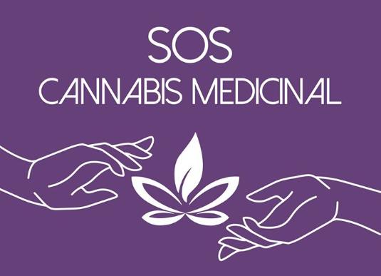 Sem muitas opções, mães e pacientes se ajudam para obter cannabis medicinal