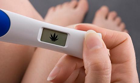 O que as mulheres grávidas precisam saber sobre o uso da cannabis