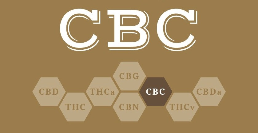 CBC: O que é, Benefícios e Efeitos