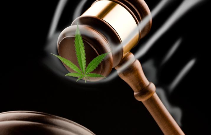 95ª Habeas Corpus para plantar cannabis medicinal é aprovado no Brasil