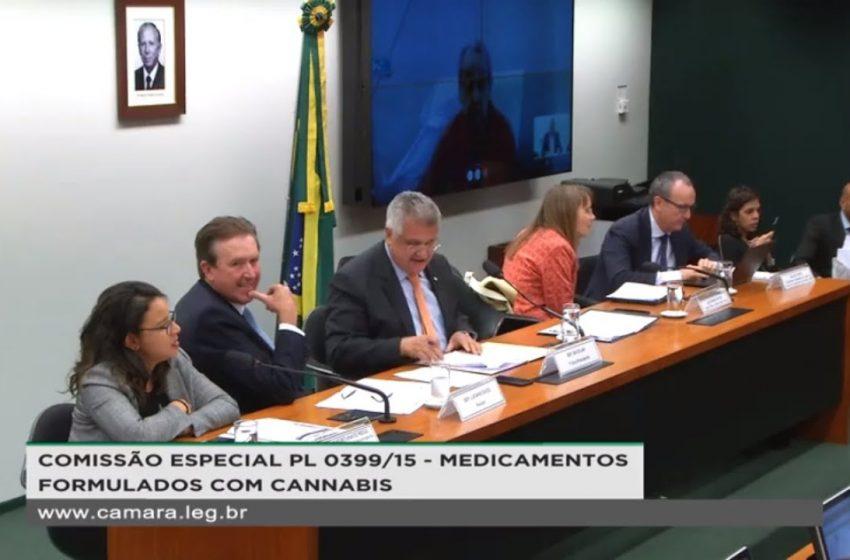 A votação para o cultivo medicinal e industrial da cannabis pode ser feita em breve