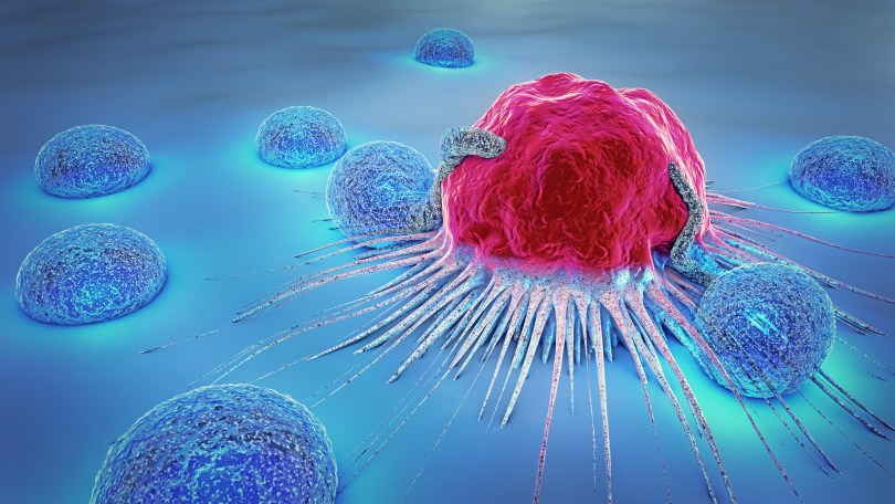 O uso de cannabigerol pode ajudar no tratamento de tumores?