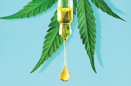 Rivotril X Cannabis: é possível substituir? Efeitos e Comparativos