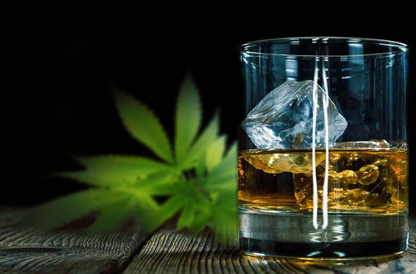 O uso da cannabis pode reduzir o uso de álcool?