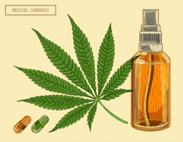 Real Scientific Hemp Oil (RSHO): o que é, para que serve e como comprar