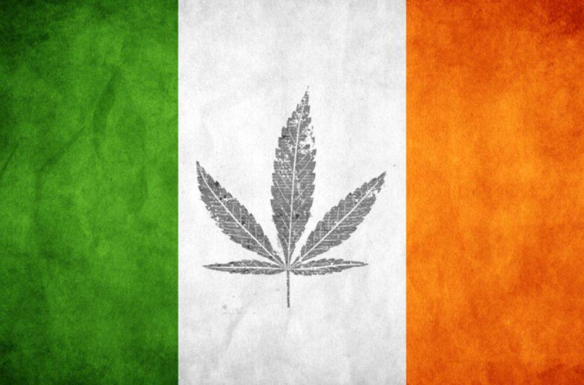 Punição mais branda relacionada a maconha é introduzida pelo governo Irlandês