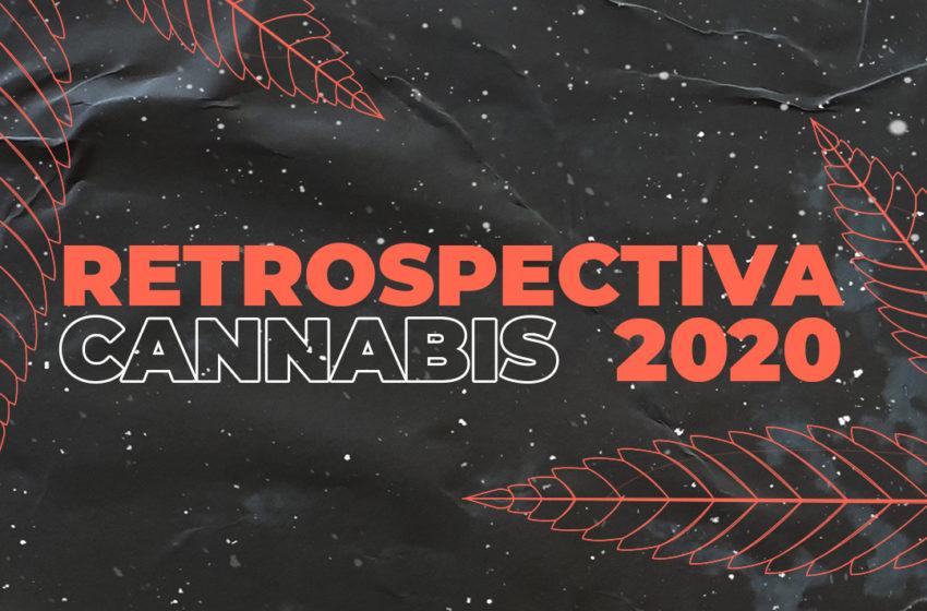 Retrospectiva Canábica 2020