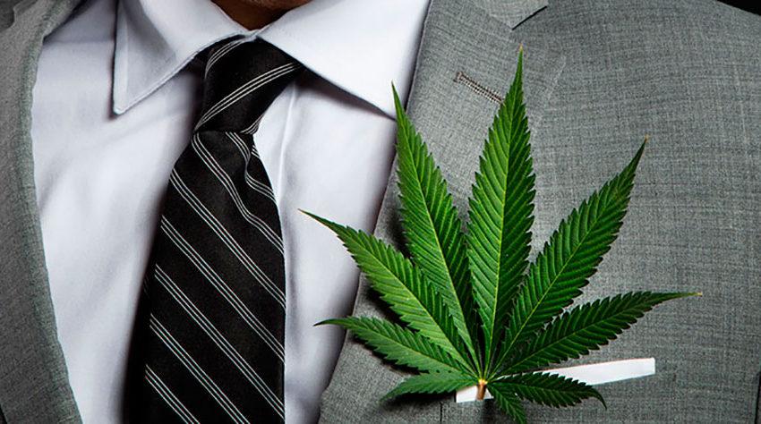 As quatro ondas de normalização da cannabis