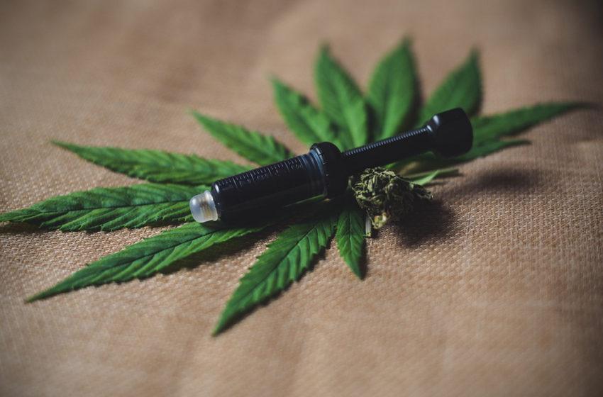 O que são seringas de cannabis? entenda a diferença dos outros métodos.