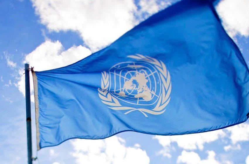 Propriedades da cannabis são finalmente reconhecidas pela ONU