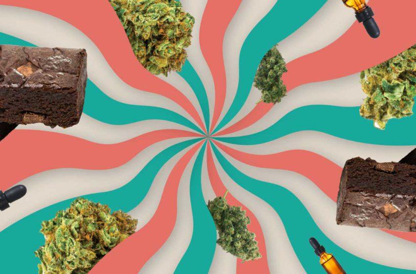 Comestíveis superam o crescimento da indústria de cannabis em 2020