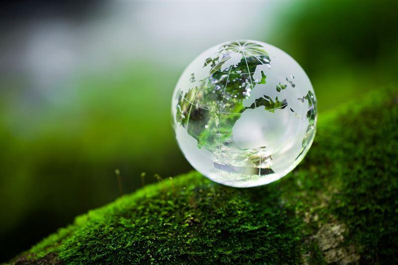 Reino Unido usa o cânhamo para ajudar na recuperação ambiental