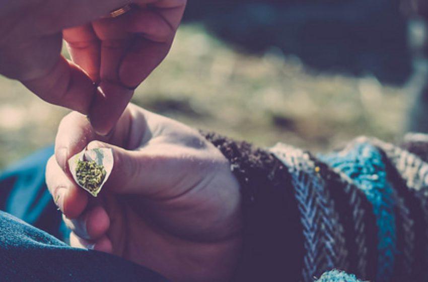 "Estudo contradiz a teoria de que a maconha é uma ""droga de entrada"" entre os consumidores"