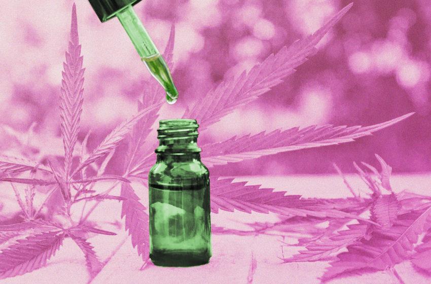 Estudo sobre o tratamento da ansiedade e insônia com cannabis está com inscrições abertas