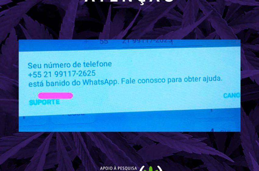 Associação Apepi é banida do WhatsApp acusada de vender drogas ilícitas