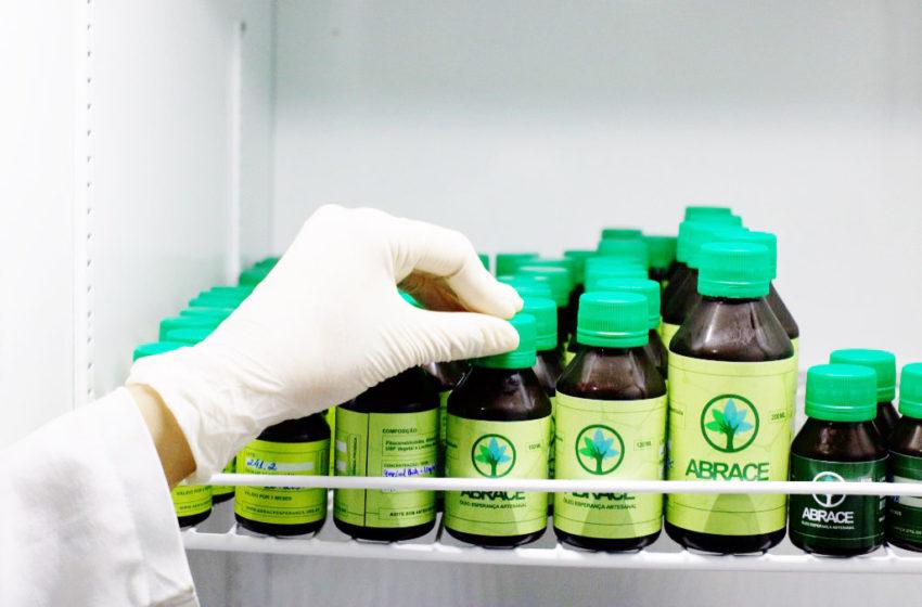 Anvisa entra na justiça para barrar a plantação de cannabis pela Abrace