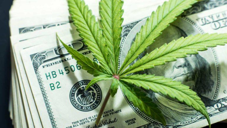 Presidente do Conselho de Washington DC apresenta legislação sobre cannabis