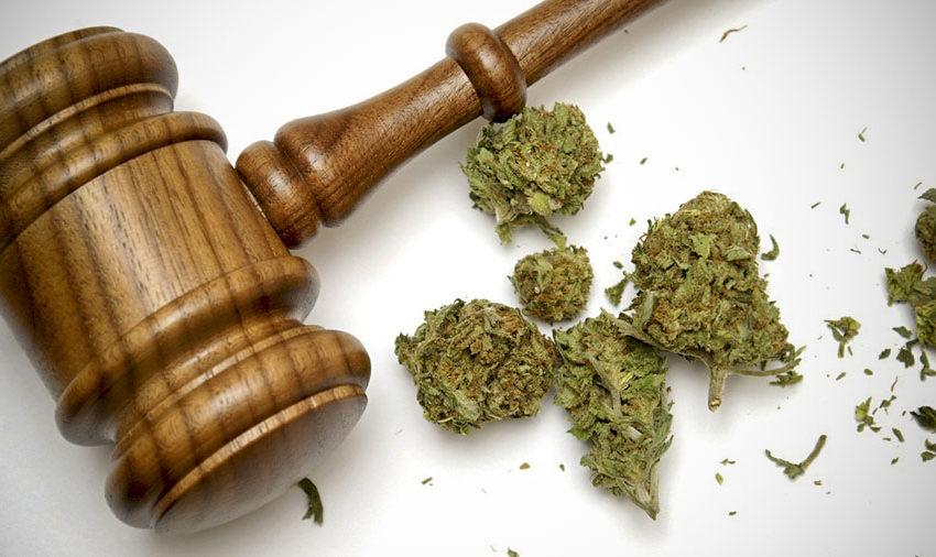 Legislatura do Novo México aprova projeto de lei recreacional sobre a cannabis
