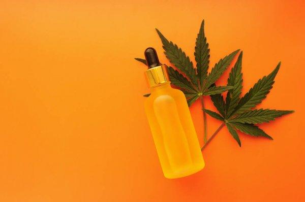 Aprovação da cannabis medicinal pelos brasileiros continua alta