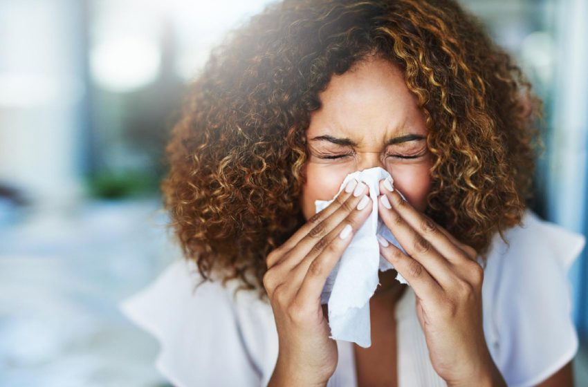 Rinite: O que é, Tipos, Causas, Sintomas e Tratamentos