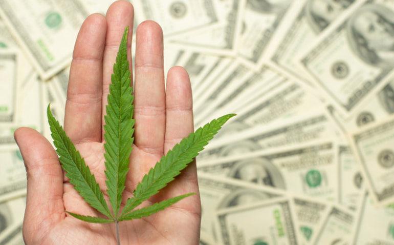 Crescimento de 245 milhões de dólares em receita anual de cannabis pode ser promissor em Nova York