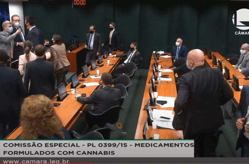 Votação da PL 399 que regula a cannabis medicinal é adiada mais uma vez
