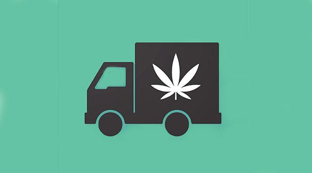 Entrega de cannabis é aprovada em Massachusetts