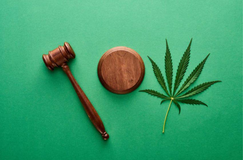 Suprema corte da Flórida diz não à proposta de votação a cannabis