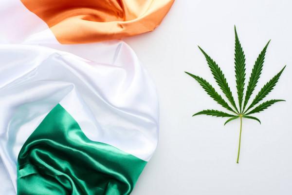 Irlanda apresenta primeiro medicamento para epilepsia derivada da cannabis