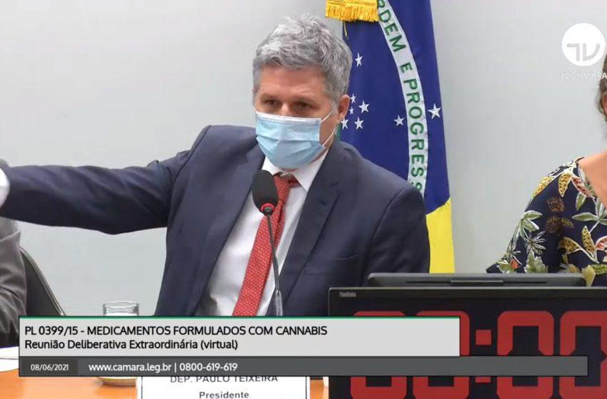 PL 399 é aprovado na Comissão Especial de Cannabis