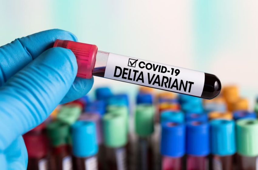 Variante Delta é mais resistente a anticorpos e vacinas, segundo estudo