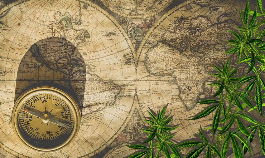 A primeira cannabis pode ter aparecido há 12 mil anos, segundo estudo