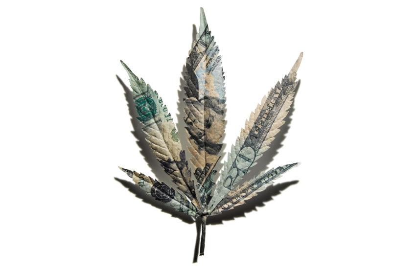 É possível investir em cannabis de forma legal?