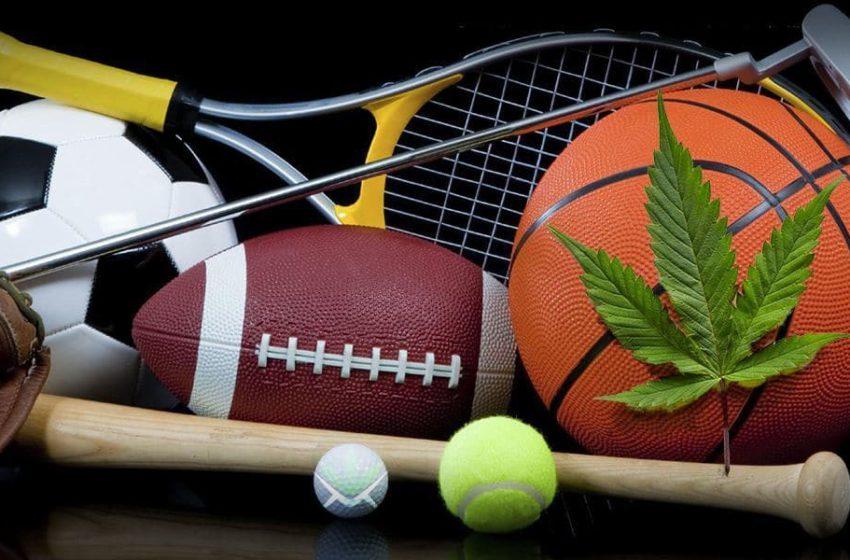 A cannabis pode melhorar o desempenho físico?