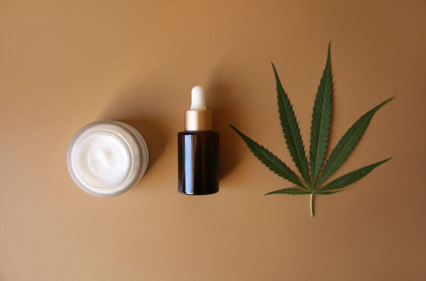 Metade dos brasileiros é favorável ao uso medicinal da cannabis, segundo pesquisa