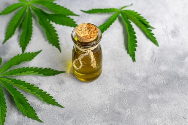 Cannabis medicinal: Há contraindicações?