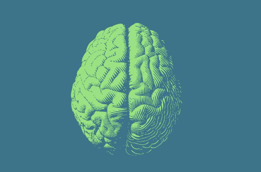 O papel da cannabis no traumatismo craniano