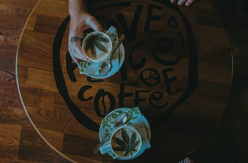 Cannabis e café: Qual a relação entre essas duas substâncias?