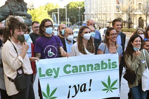 Projeto de lei sobre legalização da cannabis é rejeitado pelo parlamento espanhol