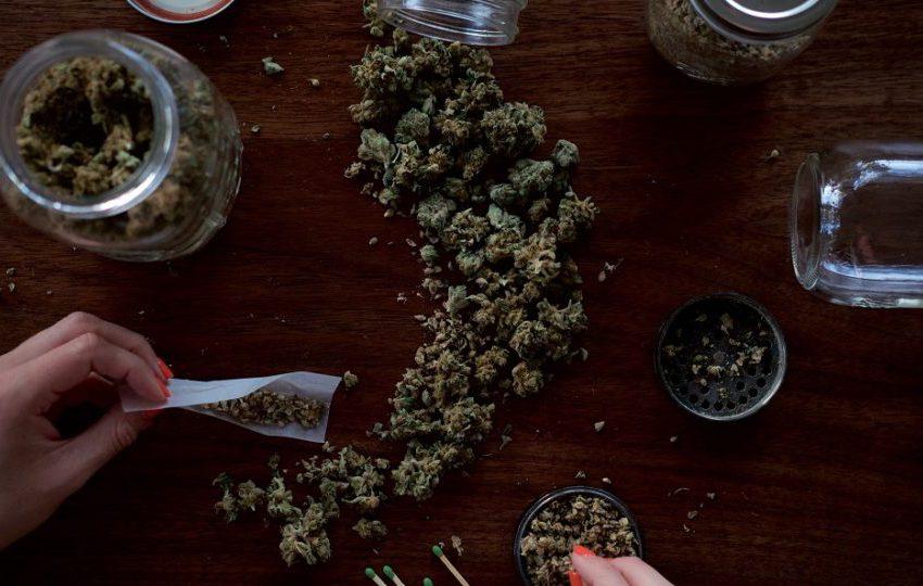 Luxemburgo será o primeiro país da Europa a legalizar produção e consumo de cannabis